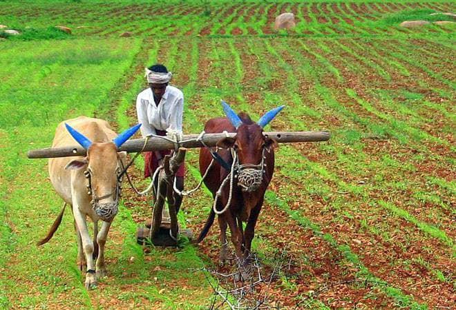 जाणीव विकासासाठी शेती आधारित जीवनशैली – भाग ४