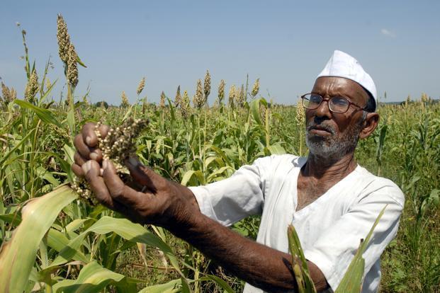 जाणीव विकासासाठी शेती आधारित जीवनशैली – 6